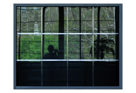 Self-Portrait:  Through a Plexiglas Darkly
