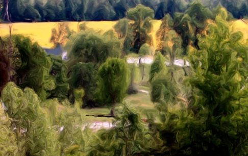 The Field of Mustard classical oil painting cr