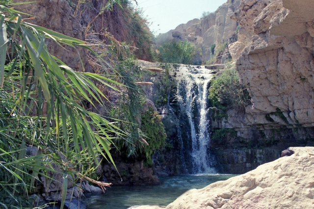 En Gedi, waterfall 2