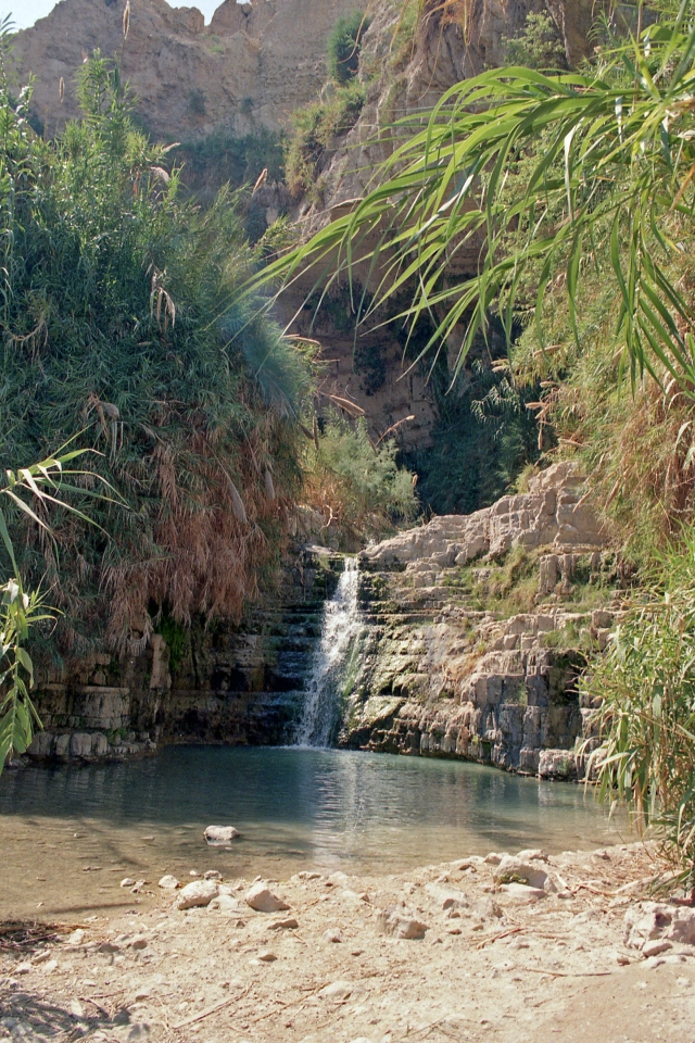 En Gedi waterfall 4